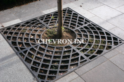 Checkered Tree Grates
