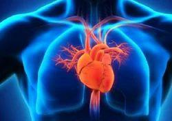 Cardiac Rehabilitation Therapy