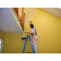 Interior Wall Paint Service