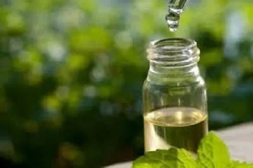 Tea Tree Oil:For Staph Infection Remedy