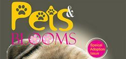 Pets and Blooms Magazine