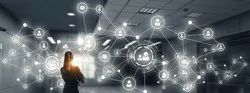 Wired Business Networking Services