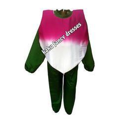 Turnip Costumes