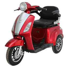 Tunwal Storm Advance Single Seater Electric Bike
