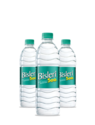 Bisleri Mineral Water 500 Ml