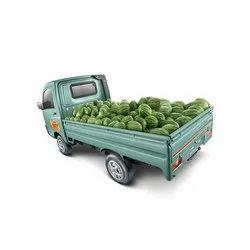 Mini Truck Insurance Services