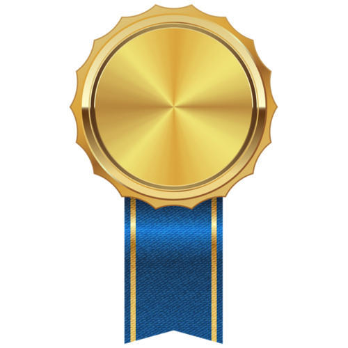 gold plated medal at rs 25 piece shahdara delhi id 16546508930
