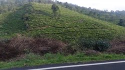 Hilltop Infrazz Ooty Property Dealers Erode Salem Tiruppur Pollachi Palakkad Palladam