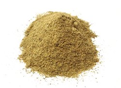Cardamom Extract Powder