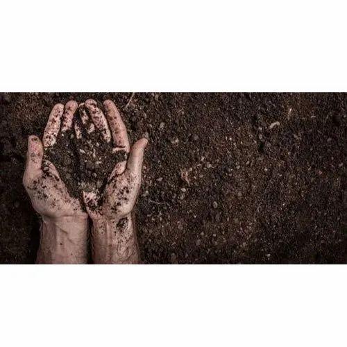 Soil Enzyme