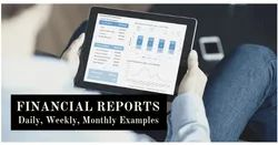 Project Finance Reports, Consultancy Firm