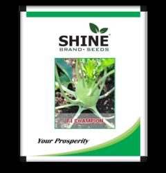 Shine Brand Seeds Hybrid Kohlrabi , Usage: Farming