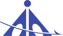 AAI NOC Consultant