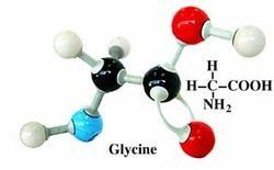 Amino Acetic Acid