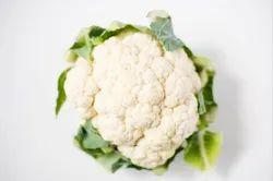 Cauliflower Fore
