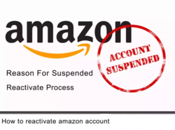 Plan Of Action Service For Suspended Account