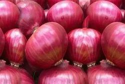 Shallots Onion A Grade Export Quality Onions, Packaging Size: 20 Kg, Onion Size Available: Large