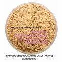 Dendrocalamus Calostachyus Bamboo Seed