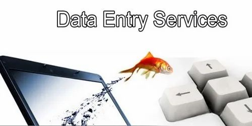 Data Entry Project  By Expert