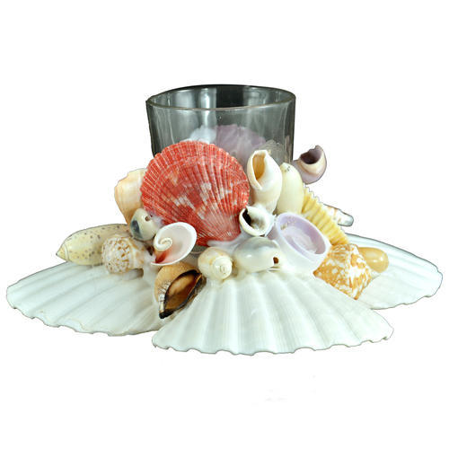 Seashell Penstand With shells