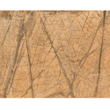 Vishwas Ceramica Ceramic 2007 Ve Glossy Series Floor Tiles, Size: 600 X 1200mm