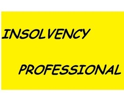 Insolvency Professional Services