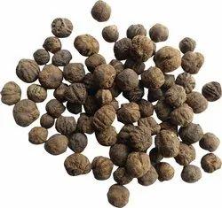 Teak Wood / Tectona Grandis / Sagwan Timber Tree Seeds