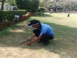 Cricket Ground Grass Maintenance Serv