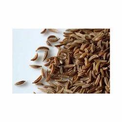 Caraway Shahjeera Kitchen Ingredient, Packaging: 10 gm to 1 kg