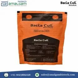 Bacta Cult Kitchen Drain cleaner