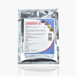 Credox G (Doxycycline 100 mg and Gentamycin 100 mg/gm)