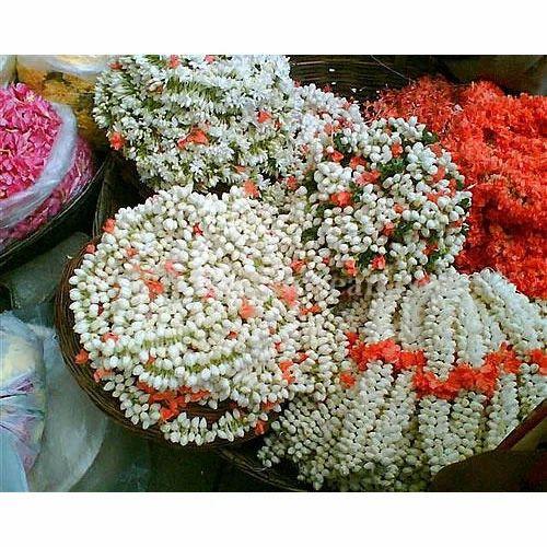 Fresh Jasmine Flowers String