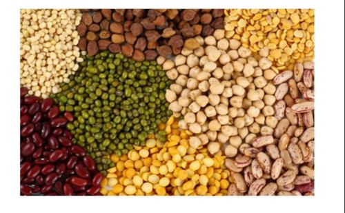 Pulses Or Lentils | Dwarka, Delhi | Mng Overseas Private