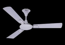 Daffodil Ceiling Fan Metallic White