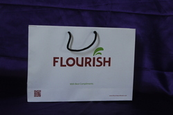 Customized Printed Paper Bag