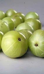 Amla (Indian Gooseberry) Extract