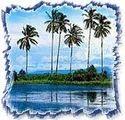 椰子海滩之旅