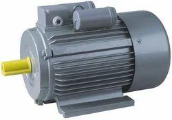 Induction Bear Motor