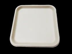 11 inch Bagasse Plate