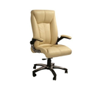 Beige Executive Chairs