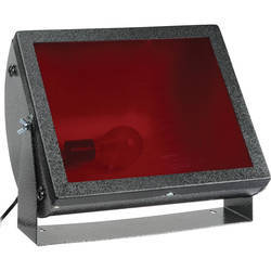 CFL red Dark Room Safe Light, Wall Mounting, 250v