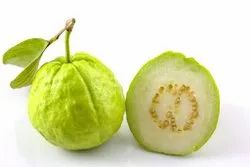 Green A and B - Grades Guava, Packaging Size: 10 Kg