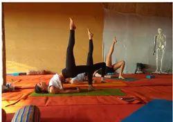 100 Hour Yoga Teacher Training Course