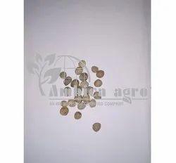 Kantola Seeds, Pack Type: Bag