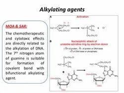 Alkylating Agent