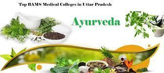 Bams Fee Structure Of Medical In Private College In Uttar Pradesh