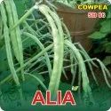 White Alia F-1 Hybrid Cowpea Seeds, Packaging Type: Poly Pouch Pack, Packaging Size: 250, 500 Gm