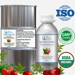 Organic Tomato Leaf Absolute Oil