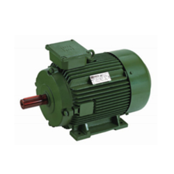 High Efficiency Standard Motor