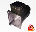 12 Watt Induction Gear Motor